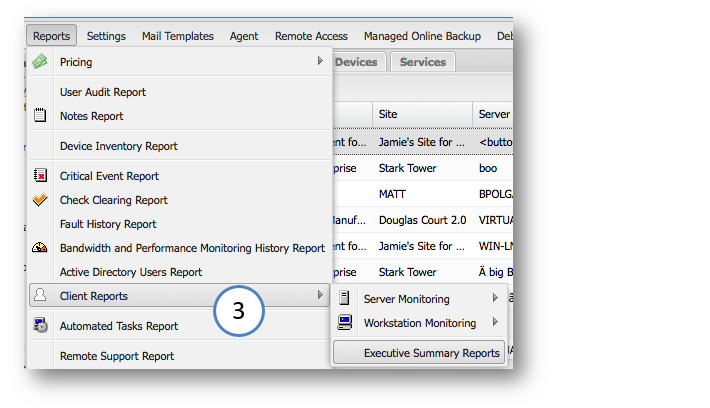 summary report in word
